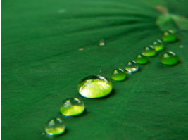 Fabrication-of-super-hydrophobic-surfaces-Fujifilm-fornt